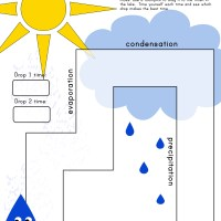 Water Race Activity: Free Printable