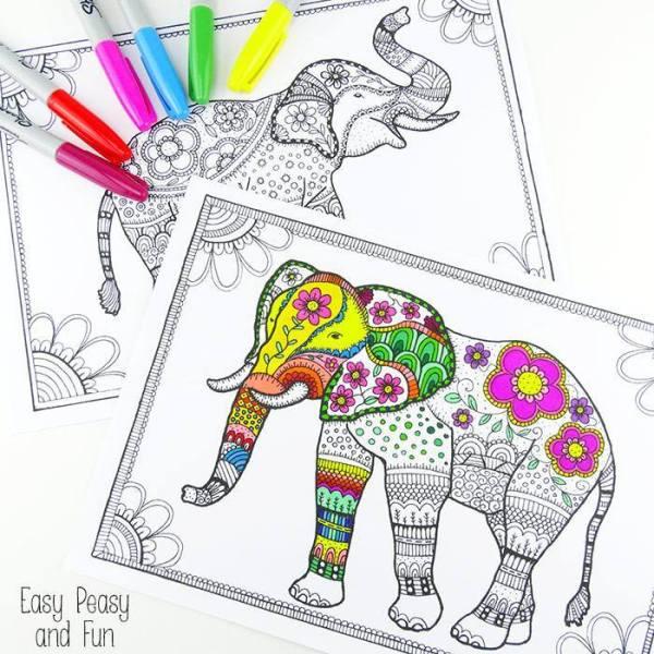 elephant sheet