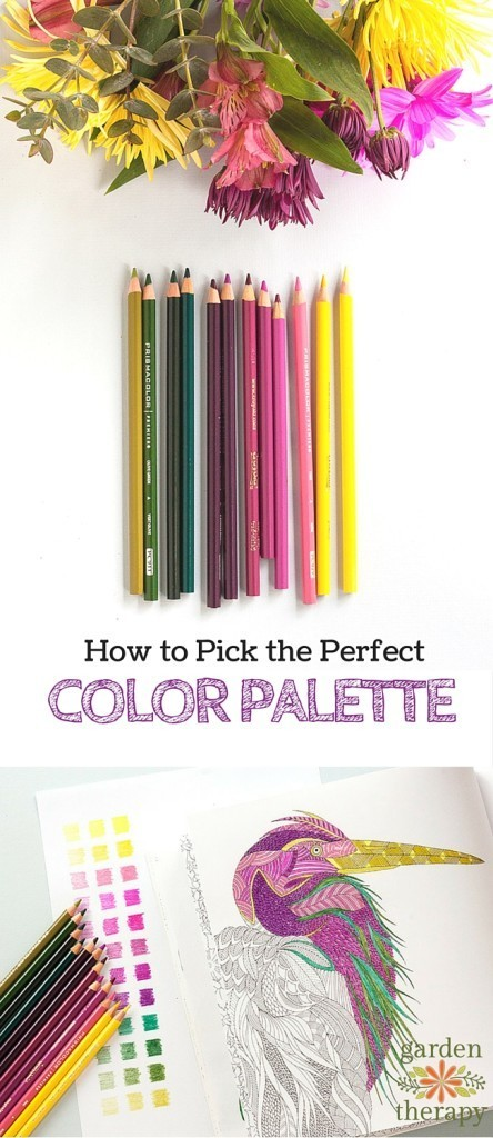 color palette tips