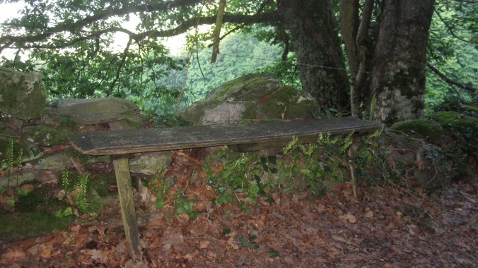 A bench not sturdy enough anymore to sit on it