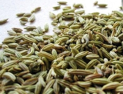 Fennel Spice healing the body