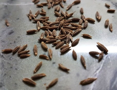 cumin seeds spices heal body