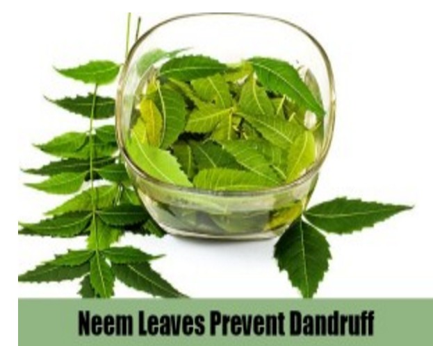 Home Remedies For Removing Dandruff Permanently