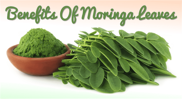 Benefits-Of-Moringa-Leaves