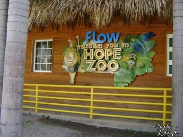 hope zoo4
