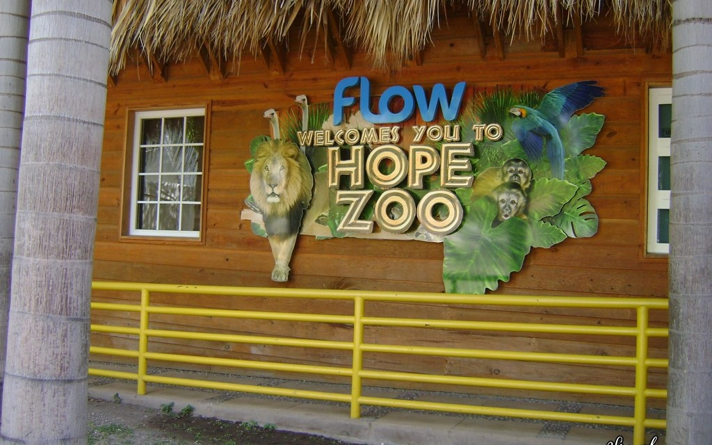 Visit Hope Zoo for 50% Off + Help the Environment