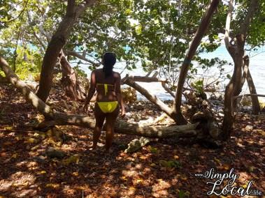 Booby Cay Island1