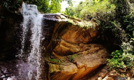 Maroon History & Natural Beauty at Nanny Falls