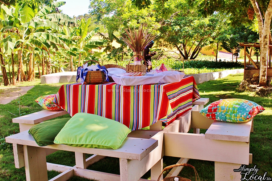Enjoy a Private Outdoor Picnic at the Oasis Resort