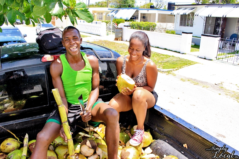 Driving in Jamaica: Ultimate Guide + Road Trip Checklists