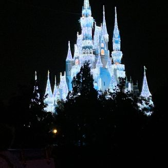 Disney_at_night