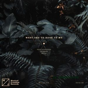 KREAM & Millean. – What You've Done To Me ft. Bemendé