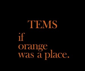 Tems - If Orange Was A Place [ Full Ep ]