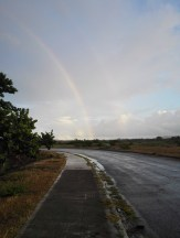morning rainbow 2