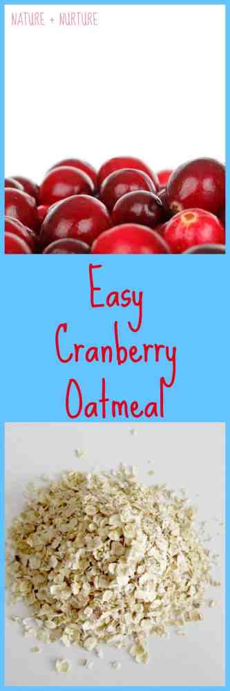 Oatmeal Recipe – Easy Cranberry Oatmeal