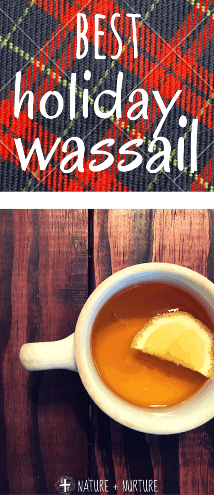 This wassail recipe has to be one of my favorite treats at Christmas. It's also easy-peasy and healthy to boot! You and your family will love it.