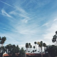 The Simply Real Health Travel Guide: PALM SPRINGS EDITION