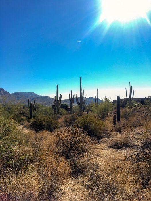 #Arizona #travel #blog #travelblog #Scottsdale