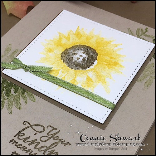 TEACH Me That! Learn how to create with the PAINTED HARVEST stamp set at www.SimplySimpleStamping.com - look for the September 7, 2017 blog post