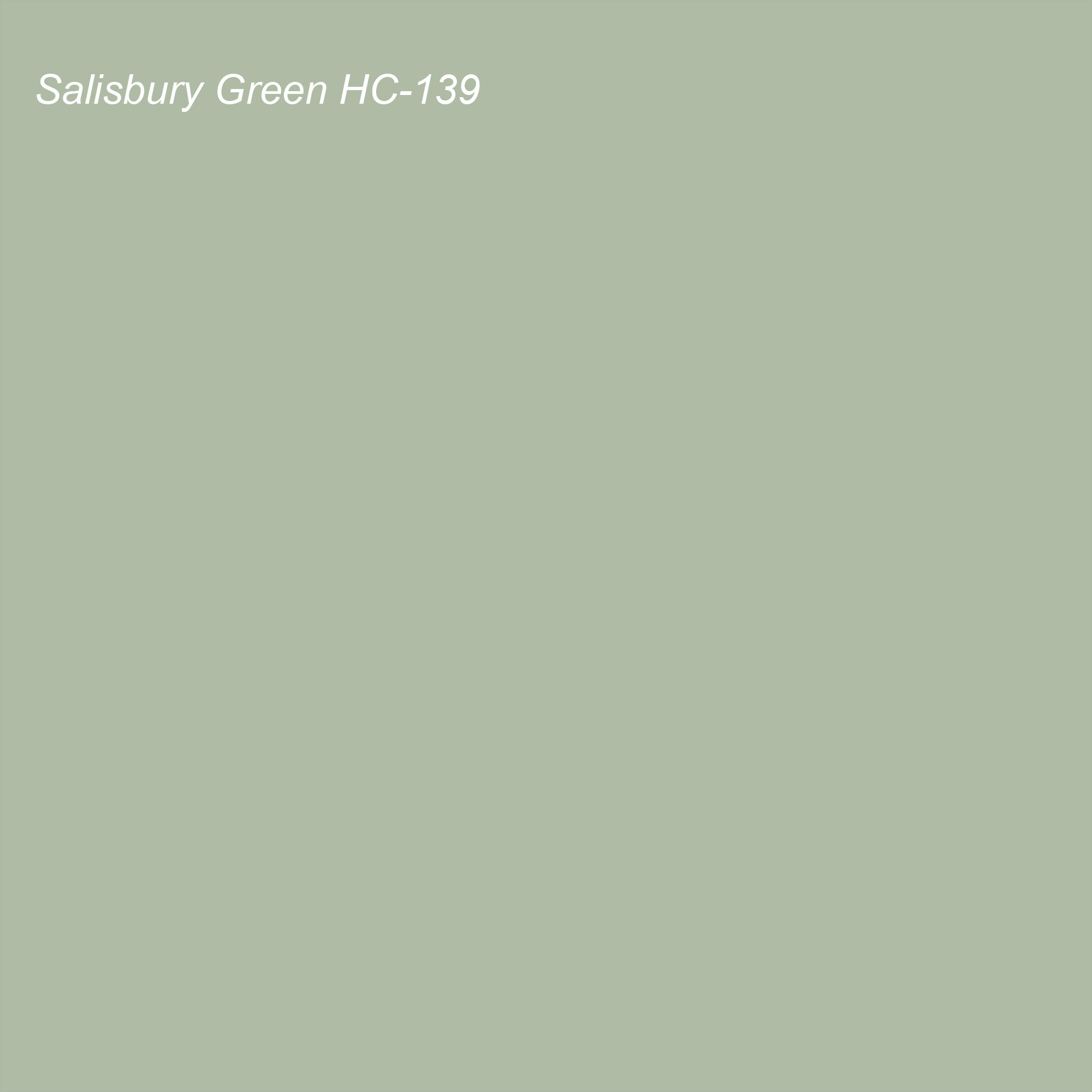 Benjamin Moore 2021 Color of the Year Suggested Accent Shade Salisbury Green HC-139