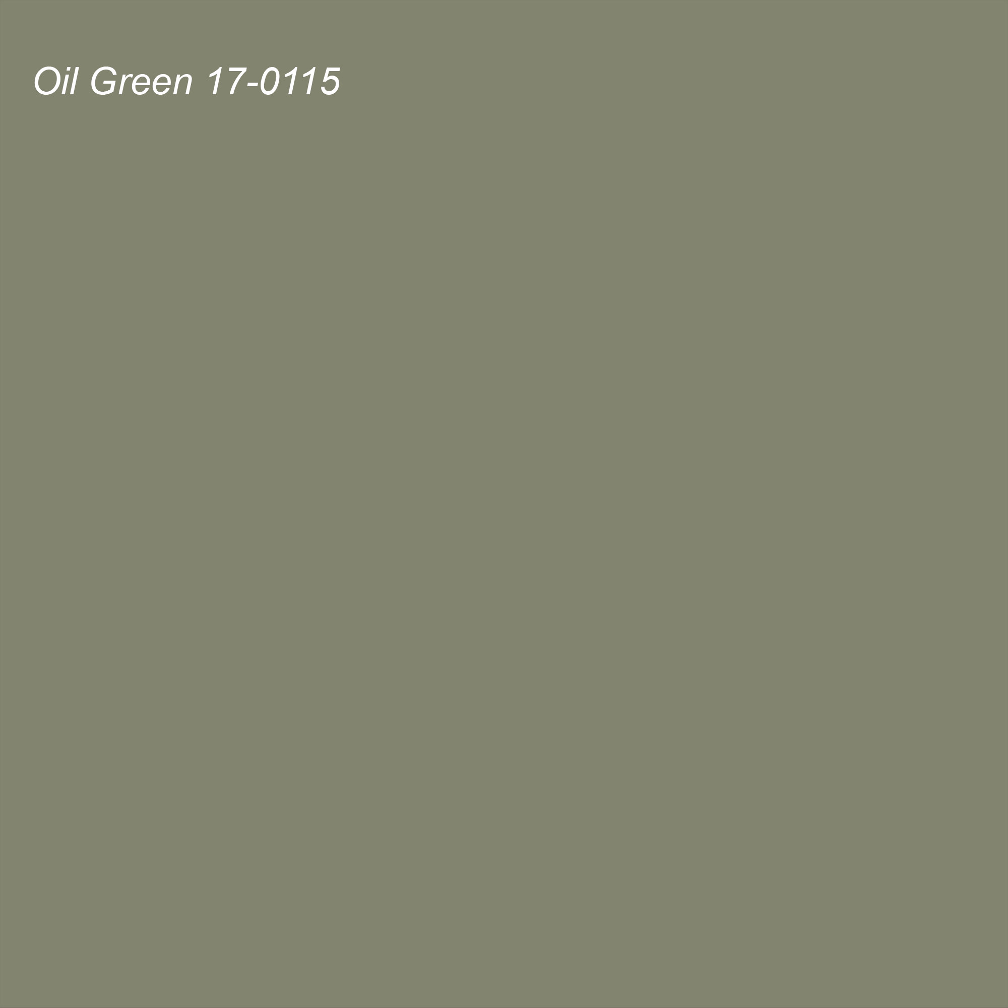 Pantone 2021 Color of the Year Suggested Accent Shade Oil Green 17-0115