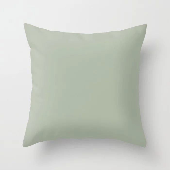 Soft Pastel Sage Green Gray Solid Color Pairs To Behr's 2021 Trending Color Jojoba N390-3 Throw Pillow
