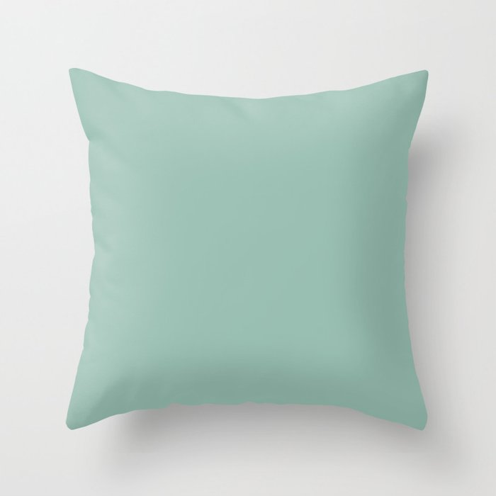 Pastel Mint Green Solid Color Behr 2021 Color of the Year Accent Shade Spring Stream PPU12-07 Throw Pillow