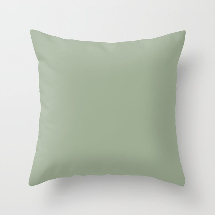 Best Seller Muted Green Single Solid Color Pairs Behr Roof Top Garden S390-4 Throw Pillow