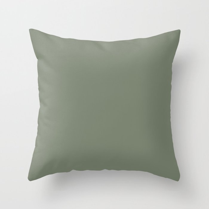 Mellow Earth Green Pairs with Magnolia Paints Olive Grove JG-09 Throw Pillow