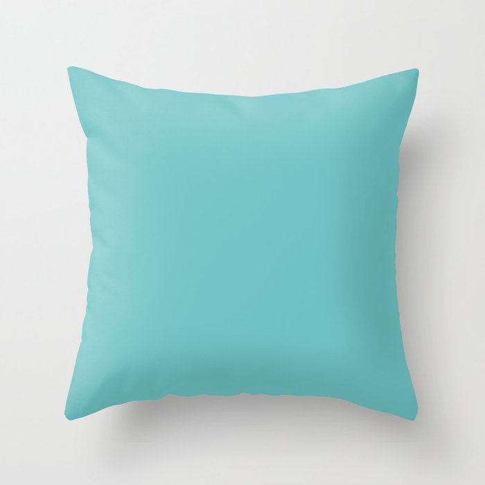 Mid-tone Aqua Blue Green Solid Color Pairs to Sherwin Williams Mariner SW 6766 Throw Pillow