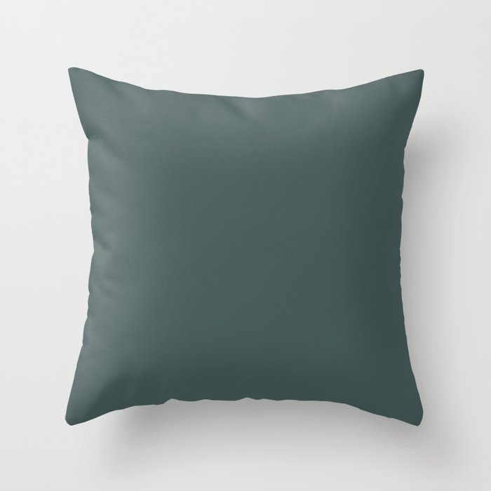 Dark Turquoise Solid Hue - 2022 Color - Shade Dunn and Edwards Loch Ness DE5748 Throw Pillow