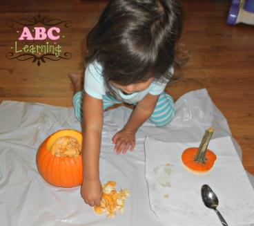 Inside a Pumpkin Science