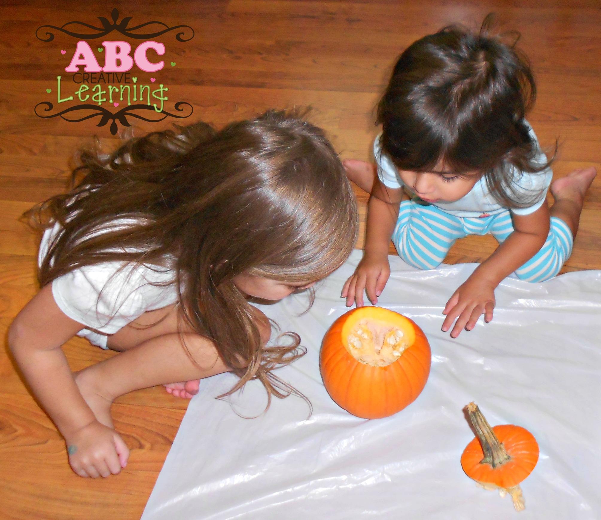 Inside A Pumpkin Science Exploration