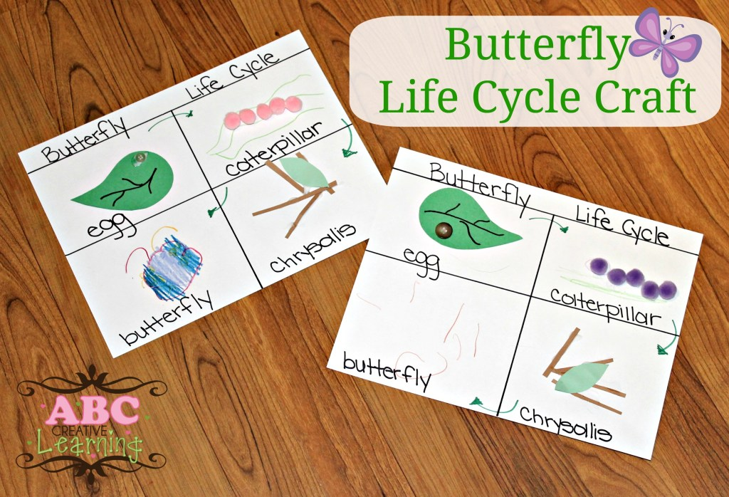 Butterfly Life Cycle Craft   Homeschooling Lesson - simplytodaylife.com
