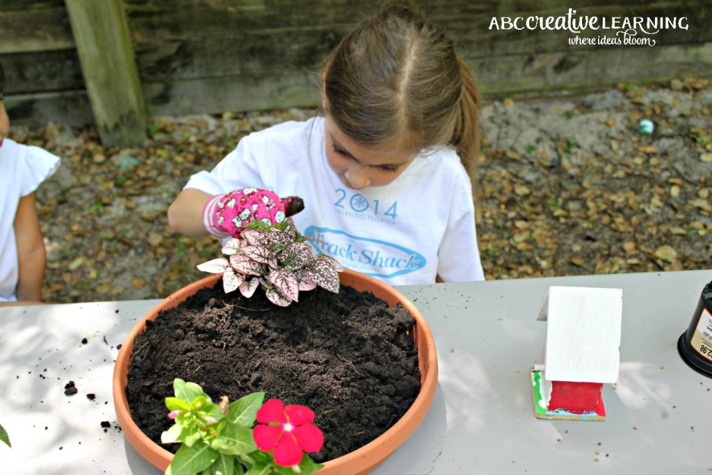 DIY Fairy Garden Inspired by Tinkerbell and Friends Fairy Plants