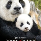 Disneynature Born In China Activity Pack