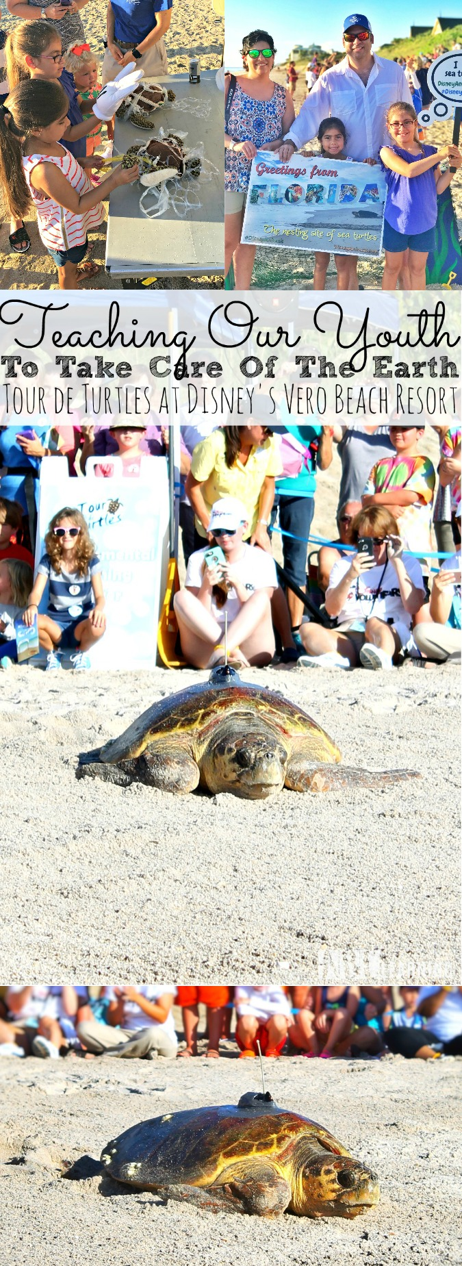 Teaching Our Youth To Take Care Of The Earth   Tour de Turtles at Disney's Vero Beach Resort - simplytodaylife.com