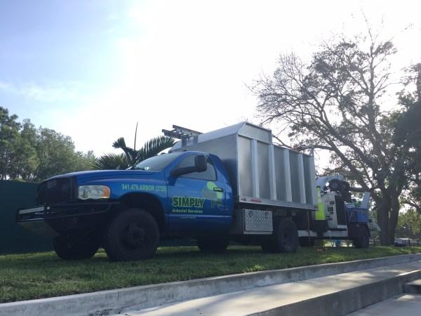 Simply Trees - Company Truck