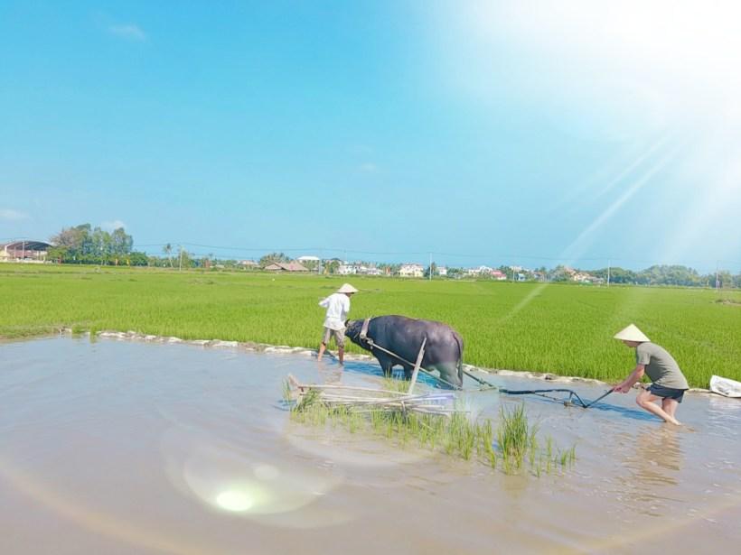 Farming and fishing life tour (5)