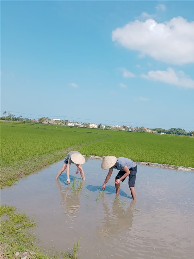 Farming, Fishing Life And Hoi An Local Food Shore Excursion Private Tour (2)