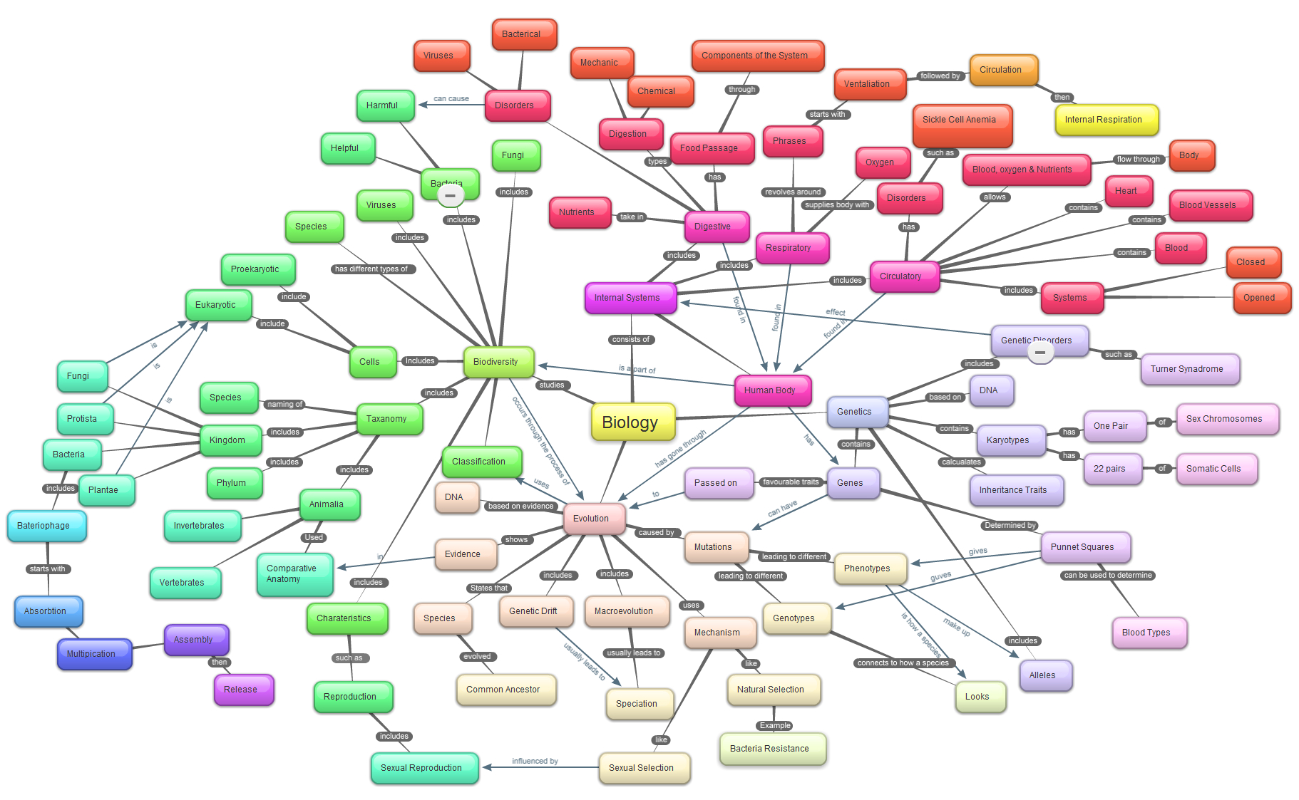 Course Concept Map Amp Collage