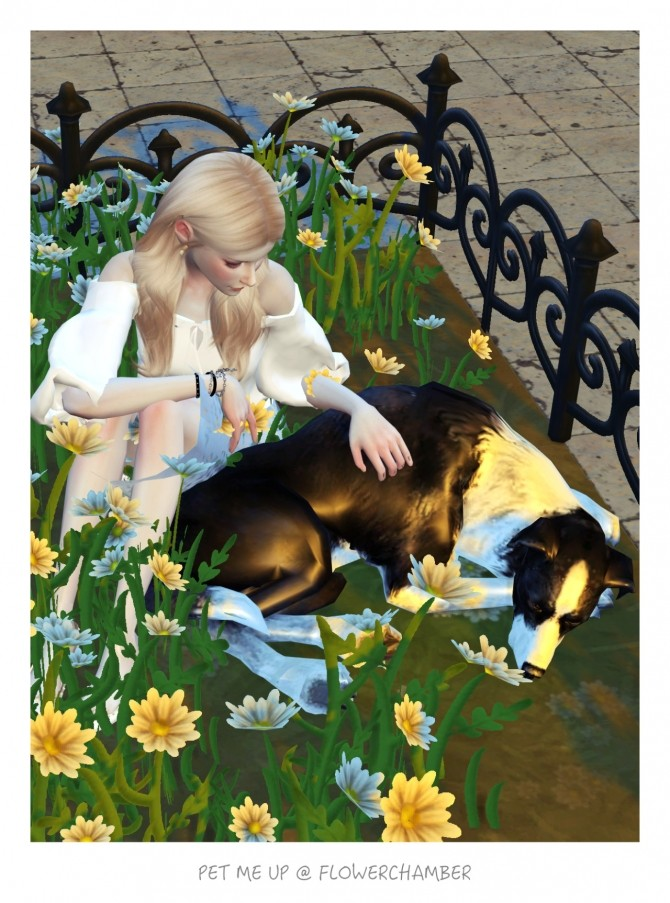 Pet Me Up Poses Sets At Flower Chamber 187 Sims 4 Updates