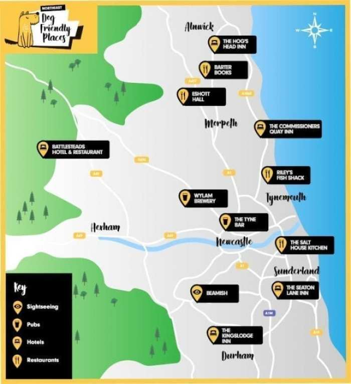 Dog friendly places to visit in North East