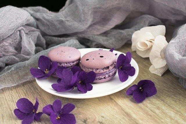 Violet macaroons
