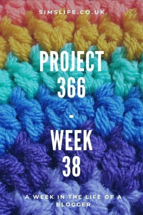 Project 366 Week 38 Pinterest