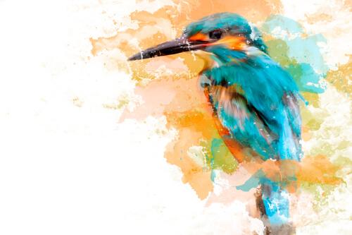 oiseau aquarelle outil doigt