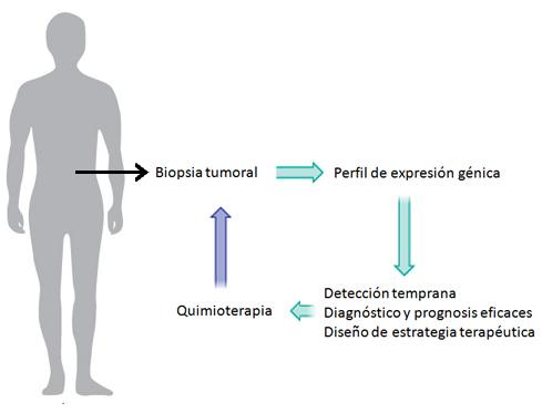 prognosis genetica en cancer