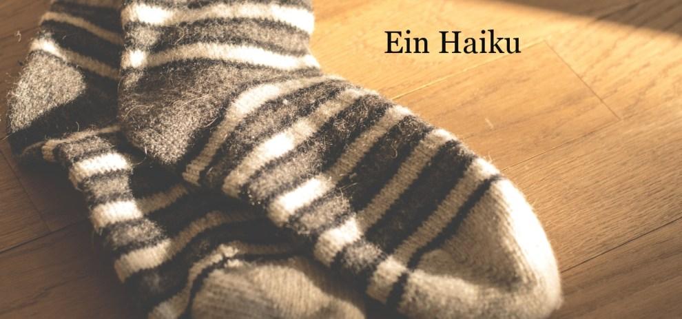 Verlorene Socken – ein Haiku