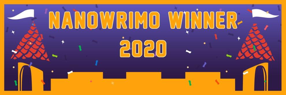 Der NaNoWriMo2020 – Ein Rückblick