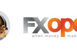 Profil Forex Broker FxOpen Indonesia
